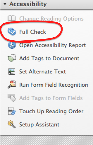 The 'Full Check' option is the 2nd of 9 options in the Accessibility Tools